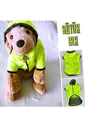 Kemique Büyük Irk - Fosforlu - Poof Bang By Kemique Köpek Montu - Köpek Paltosu - Köpek Kıyafeti