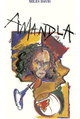 Warner Miles Davis - Amandla