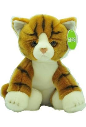Sensi Sarı Kedi 30cm