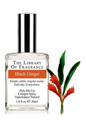 The Library Of Fragrance Black Ginger Edc Sprey 30Ml Erkek Parfümü