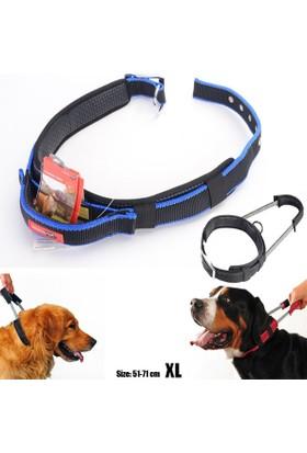 Net Akvaryum Pet Patento Pet Köpek Boy.Tasm. Yakın Tutuş Elastik Xl