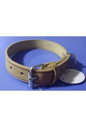Royalist Deri Köpek Boyun Tasması 58X2.5 Cm