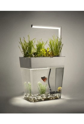 Aquagarden Ekolojik Akvaryum Premium Set