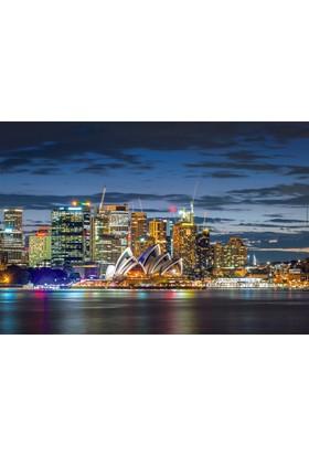 Educa Puzzle Sydney City Twilight 1000 Parça Puzzle