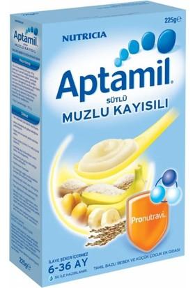 Aptamil Kaşık Maması Sütlü Muzlu Kayısılı 250 Gr