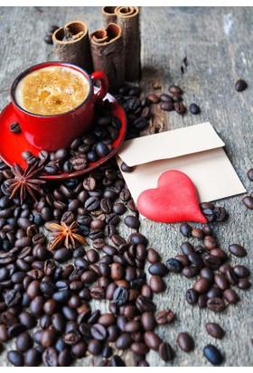 Doğuş Peluş Halı 3D Pano 700 Kahve Çekirdekleri