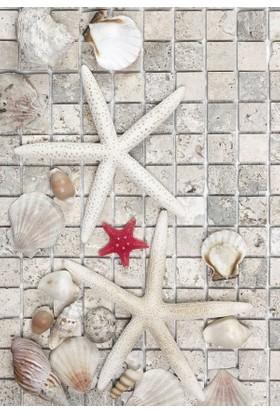 Doğuş Peluş Halı 3D Pano 718B Deniz Yıldızı Beyaz