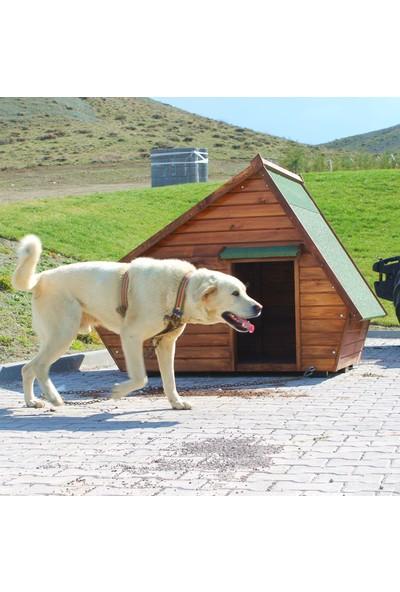 Vixpet Pencereli Köpek Kulübesi Büyük Boy