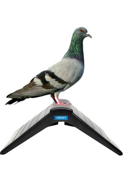 Vixpet Güvercin Tüneği Plastik