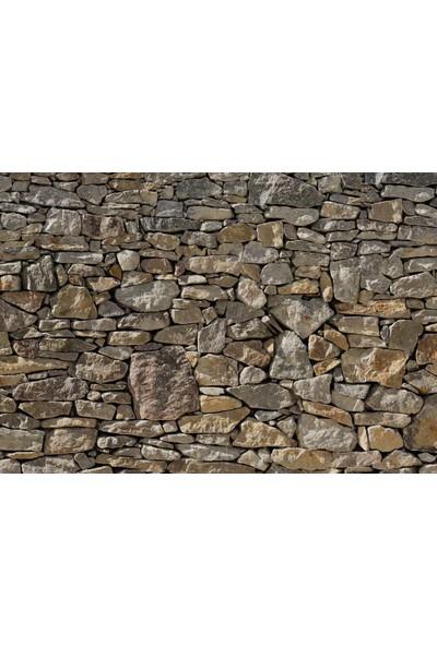 Komar 8-727 Stone Wall Duvar Posteri