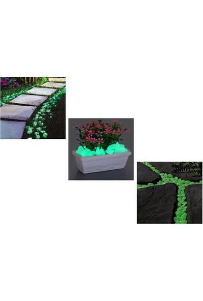 Pratik Fosforlu Çakıl Taşları (50 Adet)