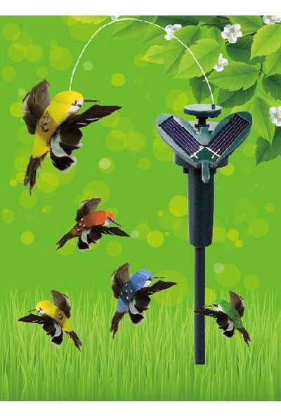 Pratik Güneş Enerjili Uçan Kuş - Solar Hummingbird