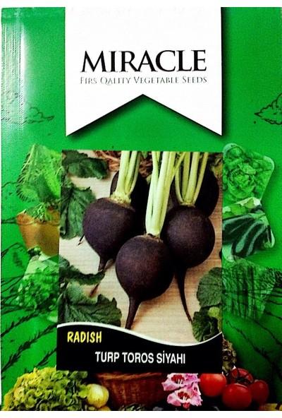 Miracle Tohum Toros Siyahı Turp Tohumu (10 gram)