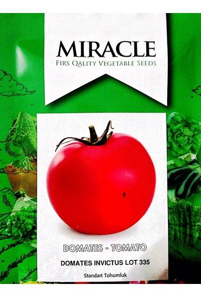 Miracle Tohum İnvictus Domates Tohumu (10 gram)