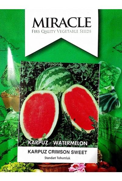 Miracle Tohum Crimson Karpuz Tohumu (10 gram)