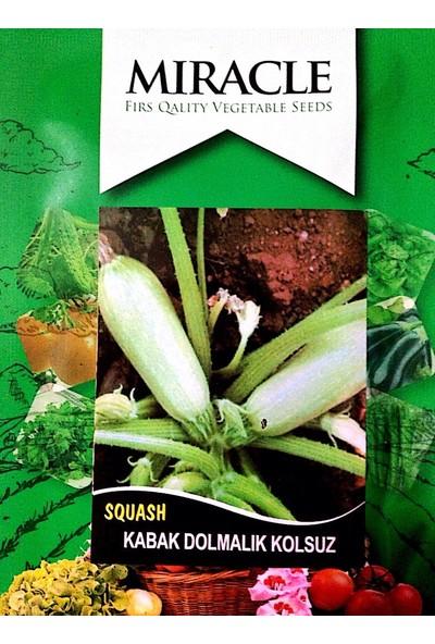 Miracle Tohum Kolsuz Beyaz Kabak Tohumu (10 gram)