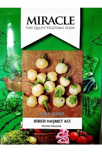 Miracle Tohum Haşmet TurşulukTombul Acı Biber Tohumu (10 gram)