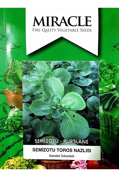 Miracle Tohum Toros Nazlısı Semiz Otu Tohumu (10 gram)
