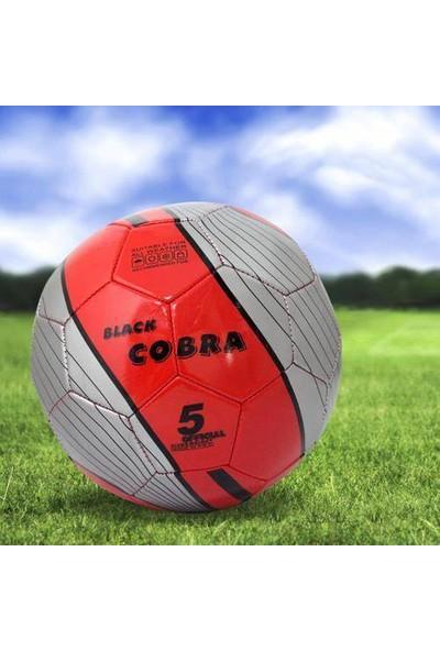 Anka Dikişli Futbol Topu
