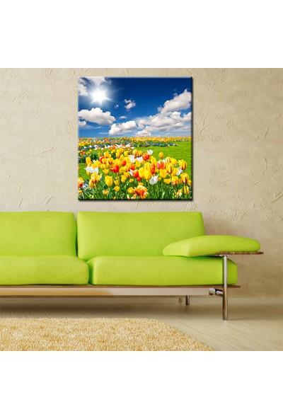 Eslim Kr29 Çiçek Kanvas Tablo 85X85 Cm