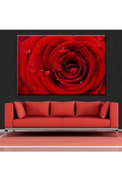 Eslim T136 Kırmızı Gül Kanvas Tablo 50X70 Cm