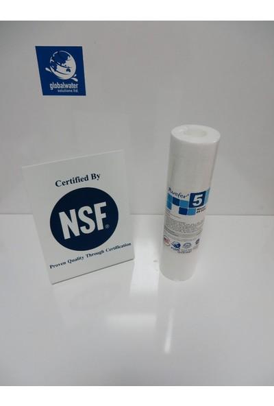 Global Water Solutions Su Arıtma Cihazı Filtresi / Kum ve Tortu Filtresi / 5 mikron