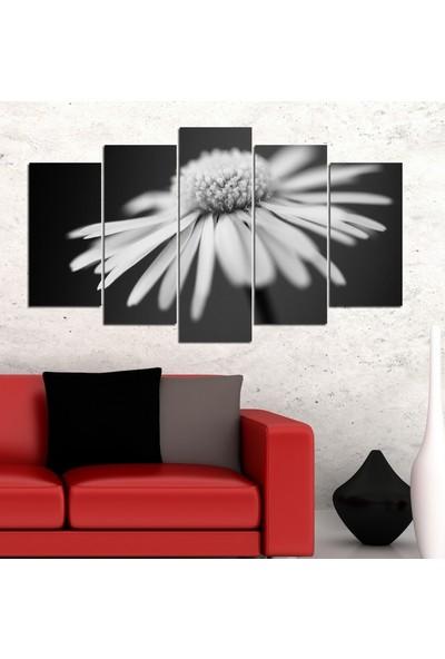 Insigne 5 Parçalı Mdf Tablo- Siyah Beyaz Çiçek 2