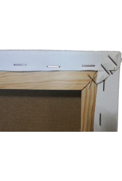 Baytuval 80x90 Tuval-Siyah (364 gr/m² - 3 cm)
