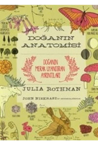 Doğanın Anatomisi - Julia Rothman