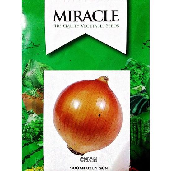 Miracle Tohum Uzun Gün Valencia Soğan Tohumu (10 gram)