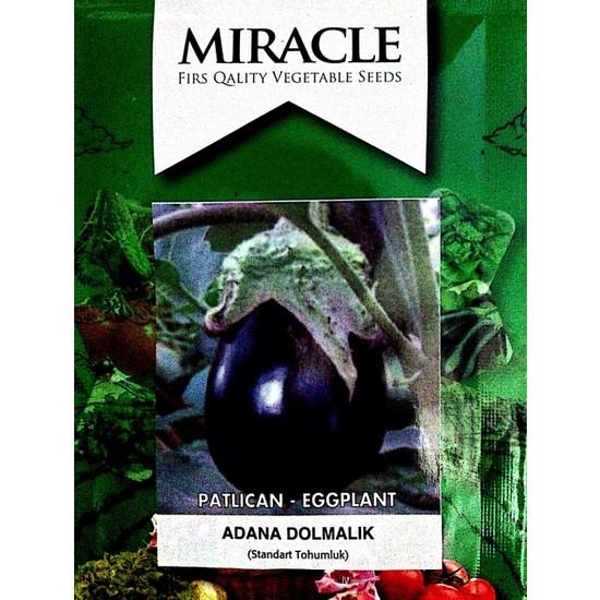 Miracle Tohum Adana Dolmalık Patlıcan Tohumu (10 gram)