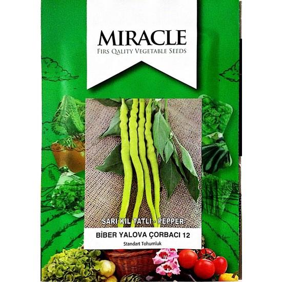 Miracle Tohum Sarı Tatlı Çorbacı Kıl Biber Tohumu (10 gram)