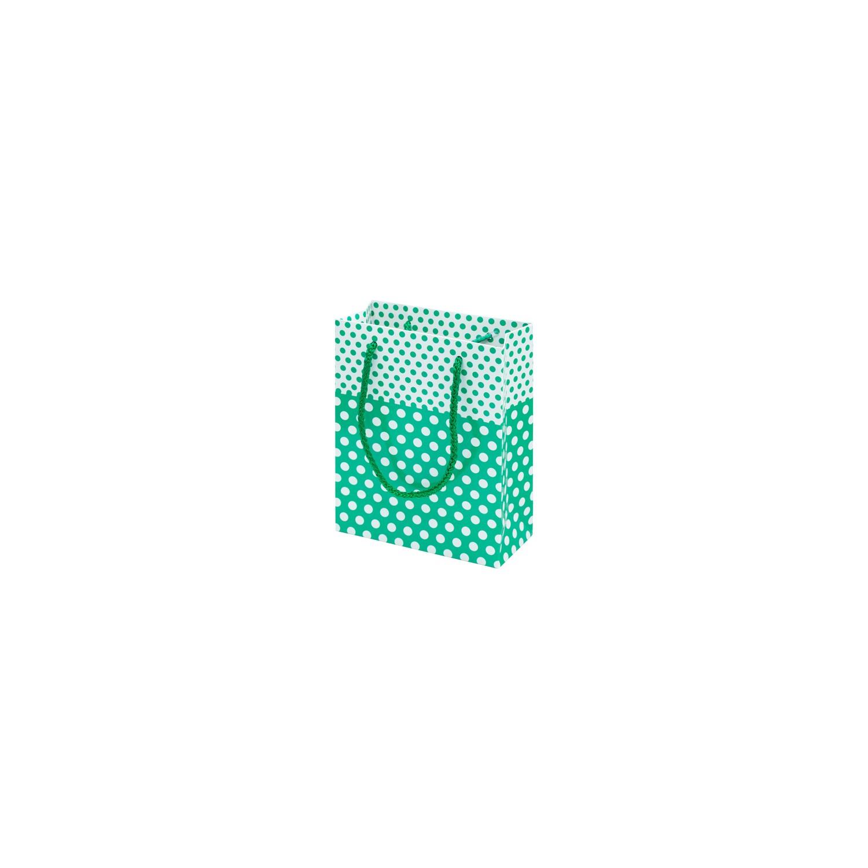 0fd154ef22451 Çanta Boy Özel Puantiye Desenli Su Yeşili Karton Taşıma Fiyatı