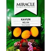 Miracle Tohum Kokulu Toros Sarıbal Tohumu (500 Gram)