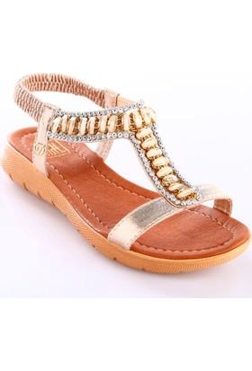 Dgn Kadın 2004 T-Strap Kesme Taşlı Arkası Lastikli Sandalet Altın