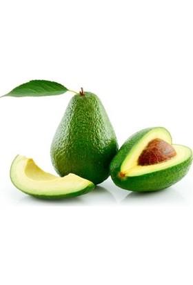 Tazece Avokado