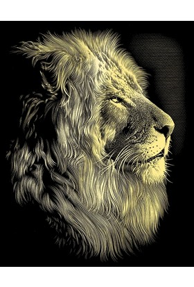 Reeves Altın Gravür Kazıma Seti - Aslan