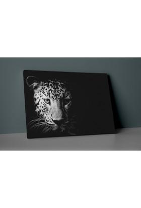 Insigne Karanlıktaki Jaguar Kanvas Tablo