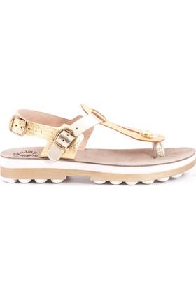 Rouge 171Fsk677 9005 Kadın Sandalet