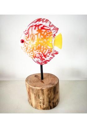 Cam Stüdyo Cam Ve Ağaç Dekor Renkli Balık (Discus)