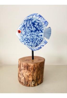 Cam Stüdyo Cam Ve Ağaç Dekor Açık Mavi Balık (Discus)