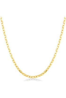 Gelin Pırlanta 14 Ayar Altın Zincir Kolye Gln100251