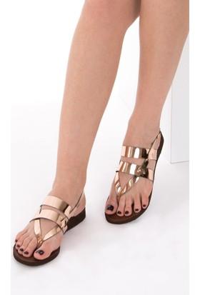 Fox Shoes Bronz Kadın Sandalet B713610434