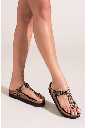 Fox Shoes Leopar Kadın Terlik B777731002