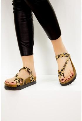 Fox Shoes Leopar Kadın Terlik B777753002