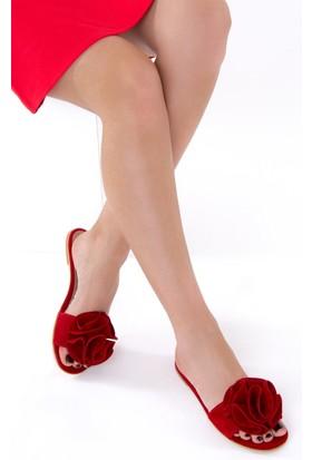 Fox Shoes Kırmızı Kadın Terlik D437174802