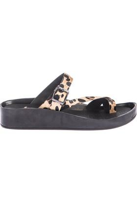 Fox Shoes Leopar Kadın Terlik D777853502