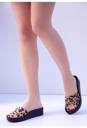 Fox Shoes Leopar Kadın Terlik D777886502