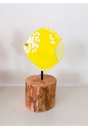 cam stüdyosu cam ve ağaç dekor balık (discus)