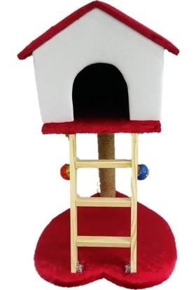 Pets Süngerli Kalp Modelli Merdiven ve Tırmalamalı Kedi Evi